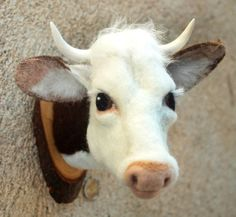 needlefelted cow head mounted on a piece of wood by by fauxfauna