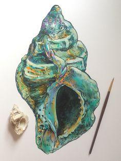 ∞Noel Badges Pugh∞ Shell Drawing, Painting & Drawing, Kunst Inspo, Art Inspo, Art And Illustration, Art Sketches, Art Drawings, Gcse Art Sketchbook, Observational Drawing