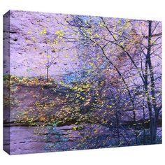 """ArtWall """"Aravaipa Canyon Dusk"""" by Dean Uhlinger Photographic Print on Wrapped Canvas Size: 36"""" H x 24"""" W"""