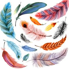 Falling Feathers I Watercolor Feather, Feather Painting, Feather Art, Feather Tattoos, Watercolor Paintings, Art Tattoos, Feather Drawing, Fish Art, Watercolor Illustration