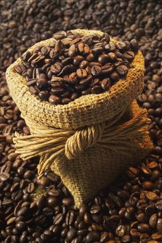 All Grades Roasted Arabica Coffee Avaliable In Stock , Find Complete Details about All Grades Roasted Arabica Coffee Avaliable In Arabica Colombian Coffee Roasted Beans from Robusta Coffee Beans Supplier or Manufacturer-Farm Trading source ltd I Love Coffee, Best Coffee, Coffee Break, My Coffee, Morning Coffee, Espresso Coffee, Coffee Cafe, Coffee Drinks, Mini Desserts