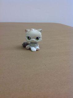 Littlest Pet Shop, LPS, #328 Persian Cat