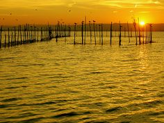Sunset, Valencia, Spain   via Flickr