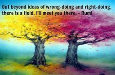 friendliness field