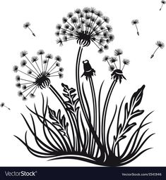 Dandelion vector image on VectorStock Mandala Painting, Fabric Painting, Fairy Templates, Dandelion Drawing, Wildflower Drawing, Pop Art Wallpaper, Design Seeds, Silhouette Art, Wall Art Designs