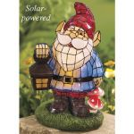 for front yard - solar