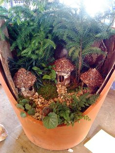 Adorable mini garden inside a broken terra cotta pot! I want to make some of these this spring