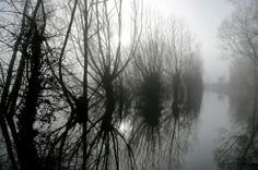 Morning mist lingers over flood water still present in fields on the Somerset Levels near Langport. www.redkinggames.com