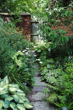 love a good shade garden Garden ideas pation backyard diy vegetable flower Corner Landscaping, Backyard Landscaping, Landscaping Ideas, Landscaping Edging, Michigan Landscaping, Sidewalk Landscaping, Backyard Layout, Landscaping Supplies, Patio Ideas