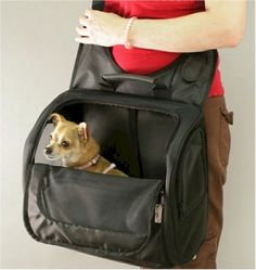 Pet Messenger Bag ** Additional details at the pin image, click it  : Cat carrier