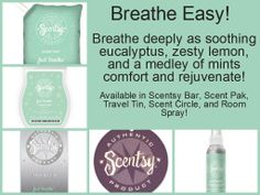 Just Breathe collection at Scentsy helps sinuses and gets you feeling better!