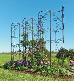 Architectural trellis panels for vines and climbing roses.