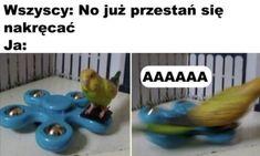Funny Lyrics, Polish Memes, All The Things Meme, Good Jokes, Creepypasta, Haha, Anime, Image, Collection