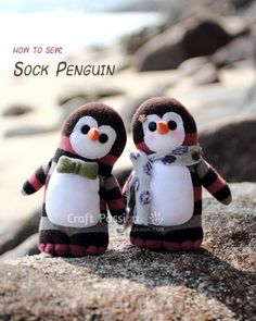sock penguin - that little bowtie is the cutest thing I have seen in FOREVER.... SO Dr. Who-ish.