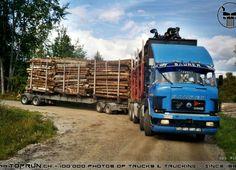 Ulsan, Turin, Cool Trucks, Big Trucks, Chevy, Volkswagen, Timber Logs, Truck Festival, Heavy Truck