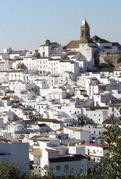 Alcalá de los Gazules, Cádiz, Spain   -- quite a contrast from Guanajuato, Mexico