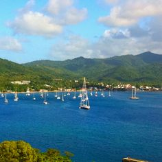 Dominica, British Virgin Islands - how about a wedding and honeymoon here for you??