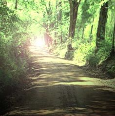 Old Stagecoach Road said to haunted in Caddo Texas