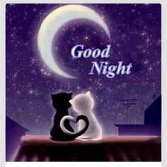 #Good night, under the moon with love.