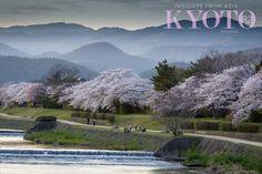 KYOTO JOURNAL 82