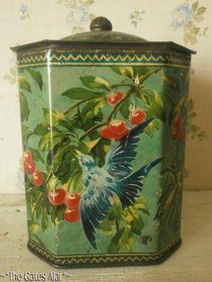 Vintage 'Birds Cherry Blossom' Tin Tea Caddy~