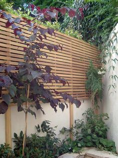 Slatted Fence Panels, Fence Slats, Diy Fence, Cedar Fence, Fence Ideas, Privacy Fence Screen, Wooden Fence Panels, Privacy Trees, Decorative Garden Fencing
