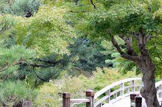 Oravankesäpesä: Japani 2013, Hikone, Genkyu-en.
