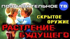 Скрытое оружие: Растление будущего (Познавательное ТВ, Михаил Величко)