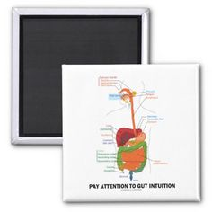 Pay Attention To Gut Intuition (Digestive System) Refrigerator Magnets #payattention #gutintuition #digestivesystem #liver #stomach #geek #humor #advice #anatomy #health #medicine #wordsandunwords #gastroenterology Pay attention to gut intuition digestive system humor magnet.