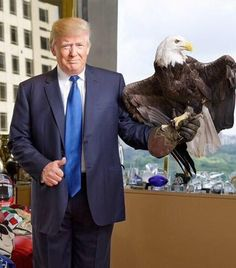 Trump announces his intended running mate.  #BetterThanPalin