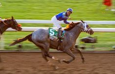 Essential Quality rallies to win Breeders' Cup Juvenile Breeders Cup Classic, Santa Anita Park, Winning Time, Leg Injury, Churchill Downs, Long Shot, First They Came, World Championship, Rally