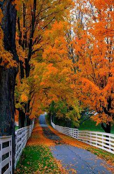 New Hampshire More