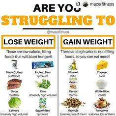 weight gain diet plan chart  weight gain for ranger