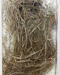 Unnamed - weed in epoxy - cm Grapevine Wreath, Epoxy, Grape Vines, Weed, Art Pieces, Wreaths, Home Decor, Door Wreaths, Room Decor