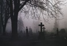 28 Terrifying True Tales of Ghosts and Other Strange Encounters with the Unknown True Horror Stories, Ghost Stories, Scary Stories, Old Cemeteries, Graveyards, Arte Obscura, Vampire, Thing 1, Images