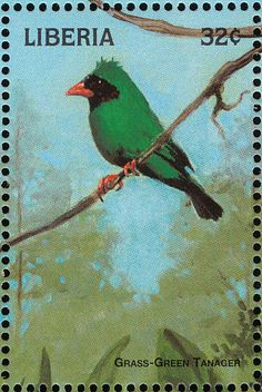 Grass-green Tanager stamps - mainly images - gallery format