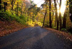 Fall in Hunterdon County NJ