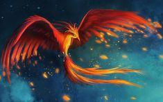 Fonds d'écran Phoenix : tous les wallpapers Phoenix