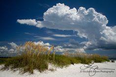 Honeymoon Island Dunedin Florida | visit blog elizabethbrownphotography com Dunedin Florida, Honeymoon Island, Outdoor Pool, State Parks, Places Ive Been, Islands, Beautiful Homes, Ocean, Clouds