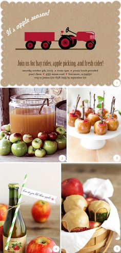 Invitations, recipes, and ideas for a cider-pressing party, from Minted!
