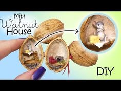 Miniature Dollhouse In A Walnut Tutorial // DIY Mouse House Hey guys! For today's miniature and polymer clay tutorial we're making this adorable matchbox dollhouse :) I love making these little houses - they're simple. Diy Dollhouse, Dollhouse Miniatures, Walnut Shell Crafts, Dollhouse Accessories, Tiny Dolls, Nature Crafts, Miniture Things, Clay Tutorials, Clay Projects