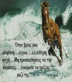 Love Quotes, Inspirational Quotes, Best Quotes Ever, Greek Quotes, Picture Video, Positive Quotes, Thoughts, Humor, Motivation