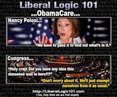 liberal-logic-101-481