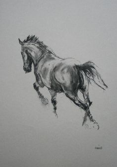 Original energy and movement equine charcoal horse sketch art drawing 'Leaning in' by H Irvine