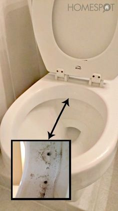 27. To get that weird mold that grows under the rim of your toilet, use vinegar and duct tape.