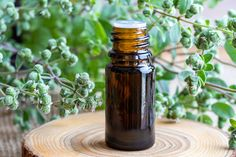 Doterra, Hot Sauce Bottles, Good To Know, Home Remedies, Mason Jars, Hair Beauty, Stuffed Peppers, Food, Herbs