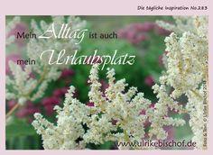 Die tägliche Inspiration No.283  www.inspirationenblog.wordpress.com  www.ulrikebischof.de