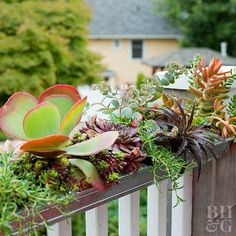 Unique Planters from Salvaged Materials