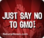 South Africa publishes updated GMO labeling requirements after food producers violate law