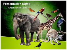 Resmy sibi pinterest zoology powerpoint template is one of the best powerpoint templates by toneelgroepblik Images